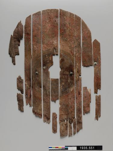Image of the Roman shield (photo credit YUAG)