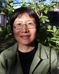 Rui Chen's picture